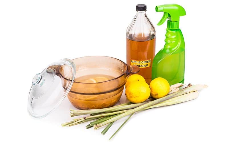 How to remove fleas from dogs with vinegar